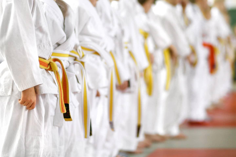 Neil Stone's Karate Academy Deb Stone